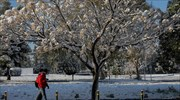 Heavy snowfall foresee for parts of Greece over weekend