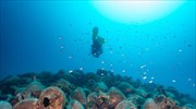 Ban on scuba diving at 97 underwater ship, plane wrecks in Greek waters lifted